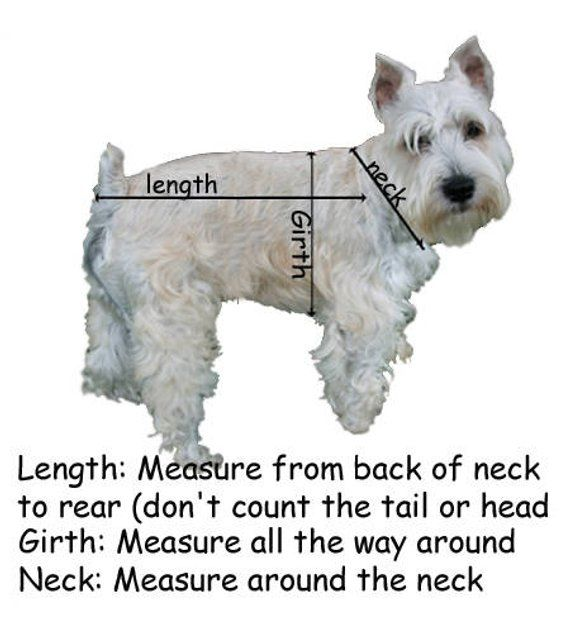 Dogo Frankenstein Dog Costume Size Chart With Images Small Dog