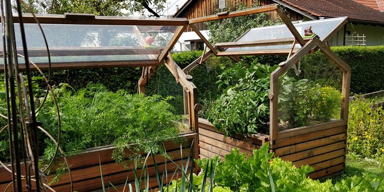 Quarantäne Eigener Garten