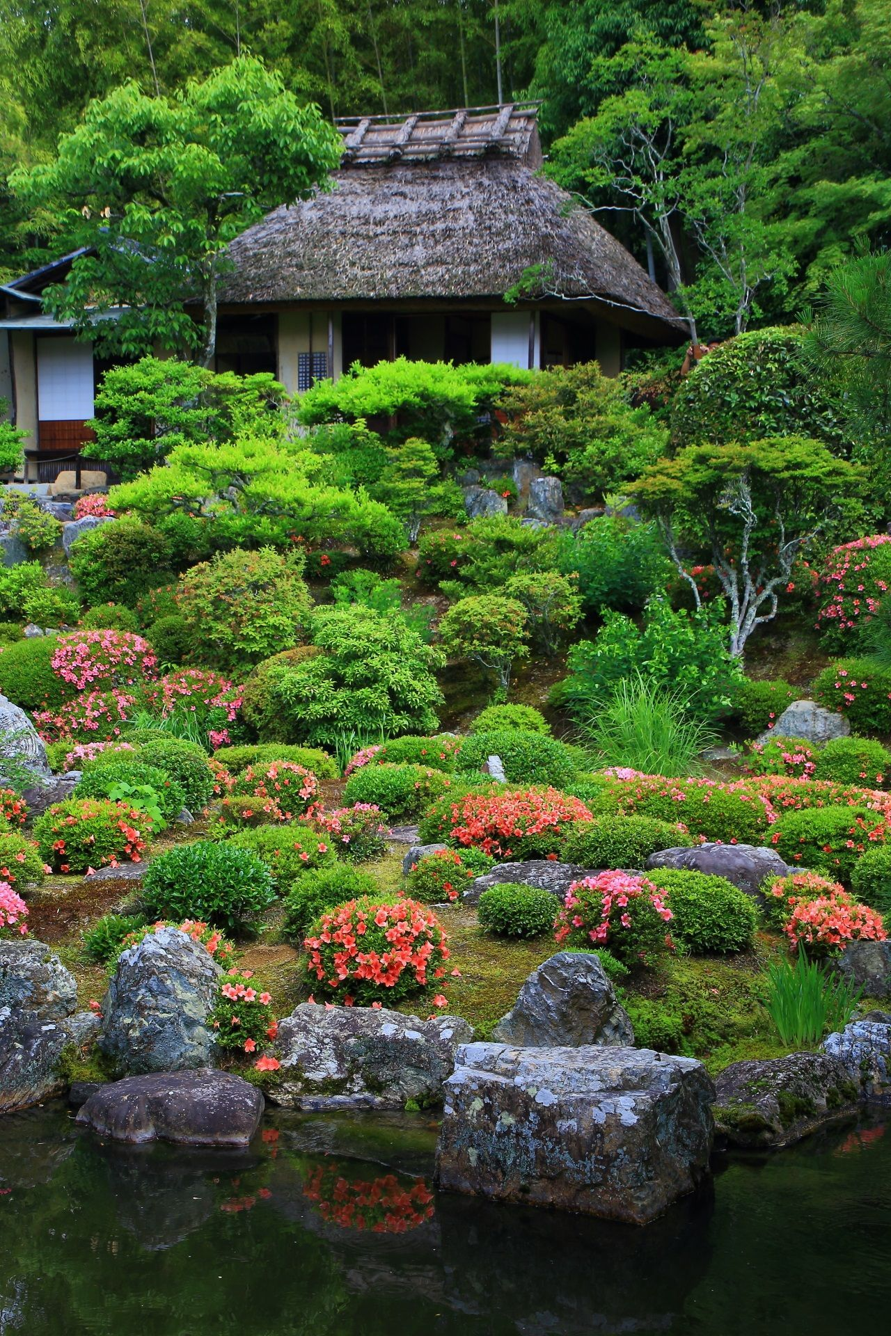 Azalea And Green Tojiin Temple In Kyoto,Japan
