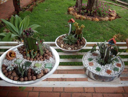 Vida Suculenta Quer aprender a fazer um mini jardim de plantas