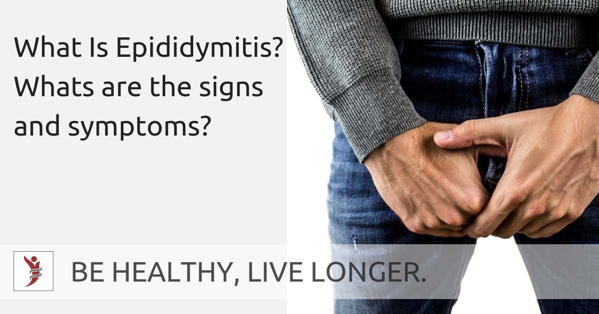 What Is Epididymitis Whats Are The Signs And Symptoms Bhll