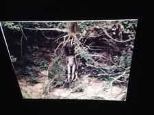 "Ana Mendieta ""Image From Yagul 1973"" Cuban Performance Art 35mm Glass Slide"