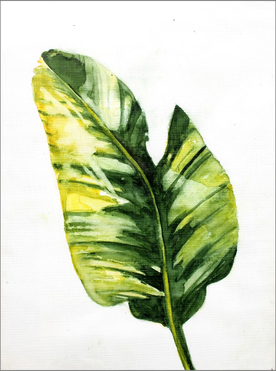 Banana Leaf #1 , 9x12 | Banana Artwork | Pinterest ...