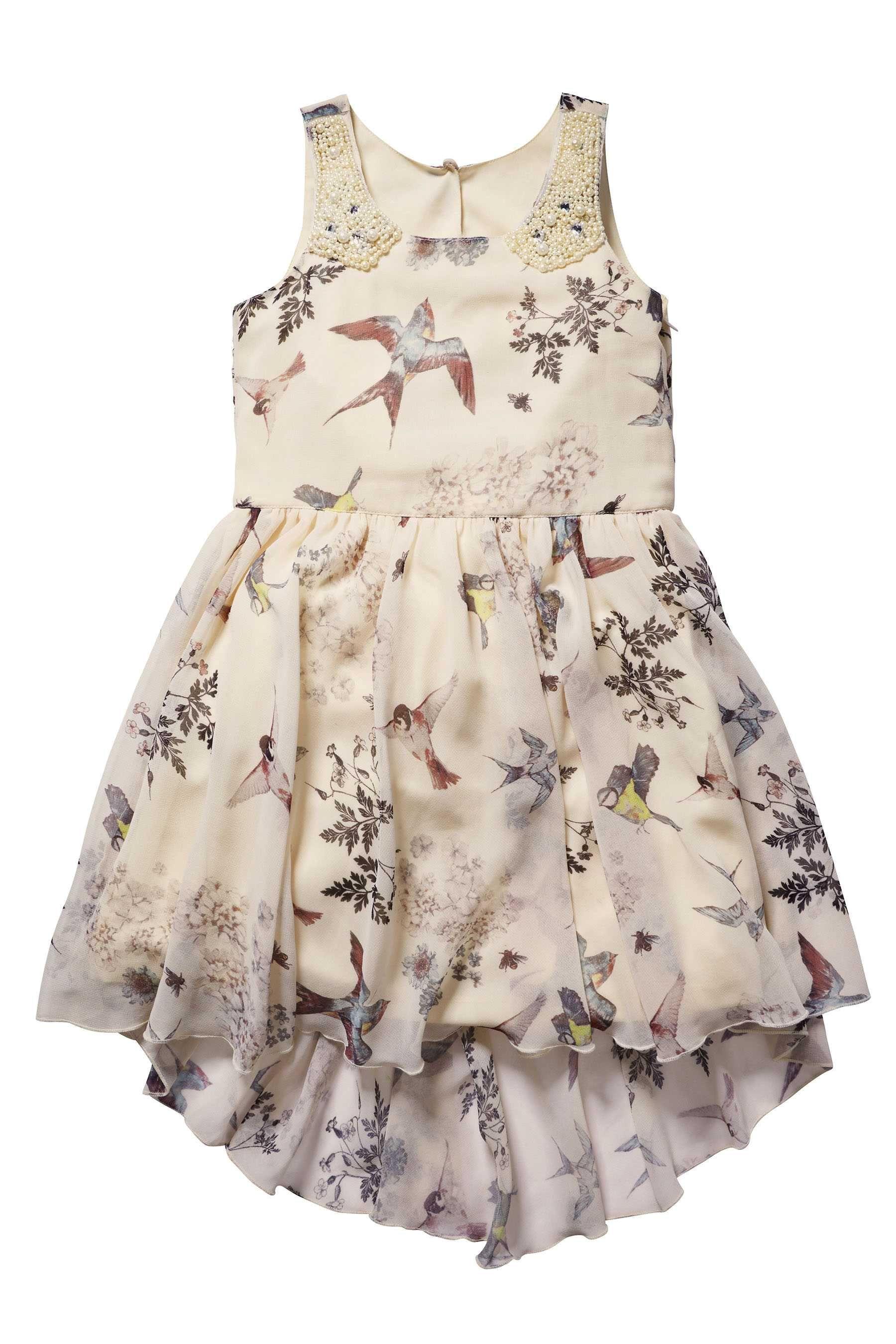 2c4b76eb1cba Buy Bird Print Dress (3-16yrs) from the Next UK online shop
