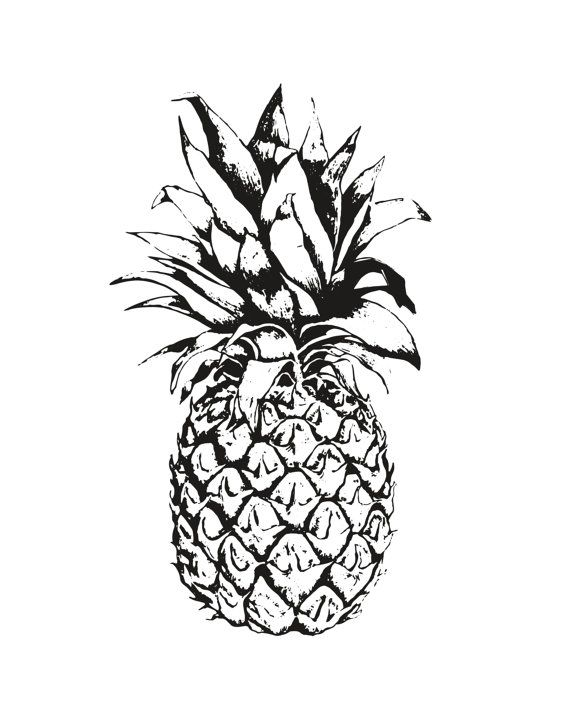 Black pineapple on white background art print by - Ananas dessin ...