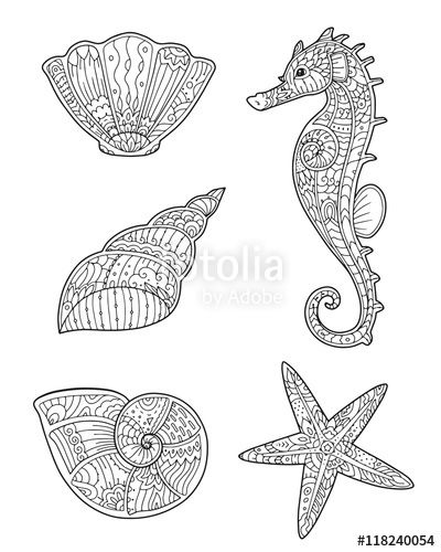 Vector: Adult coloring page with seashells, seahorse and