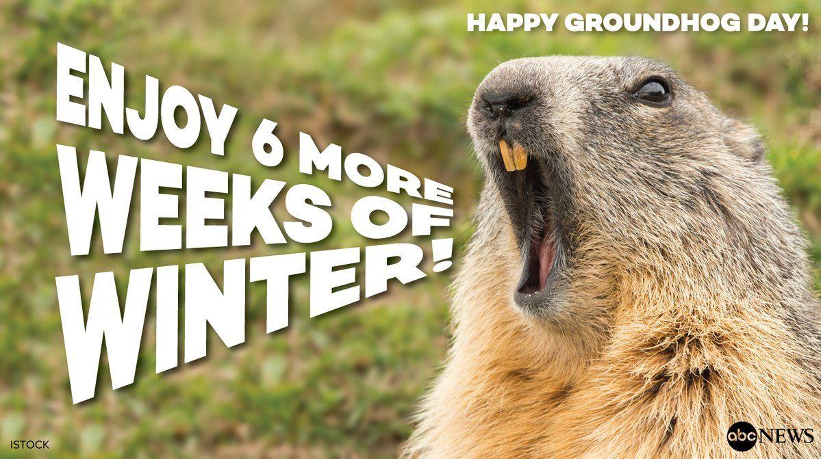 Groundhog Day 2018 Happy groundhog day, Groundhog day