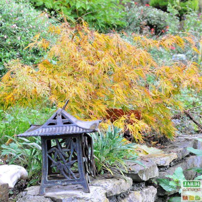 8 principes respecter pour crer un jardin japonais pour crer chez soi et lanterne