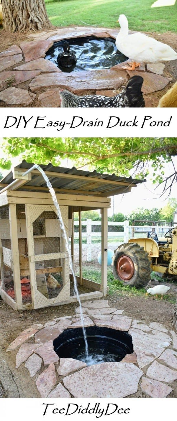 DIY Attractive Easy Drain Duck Pond - Provides ducks with ...