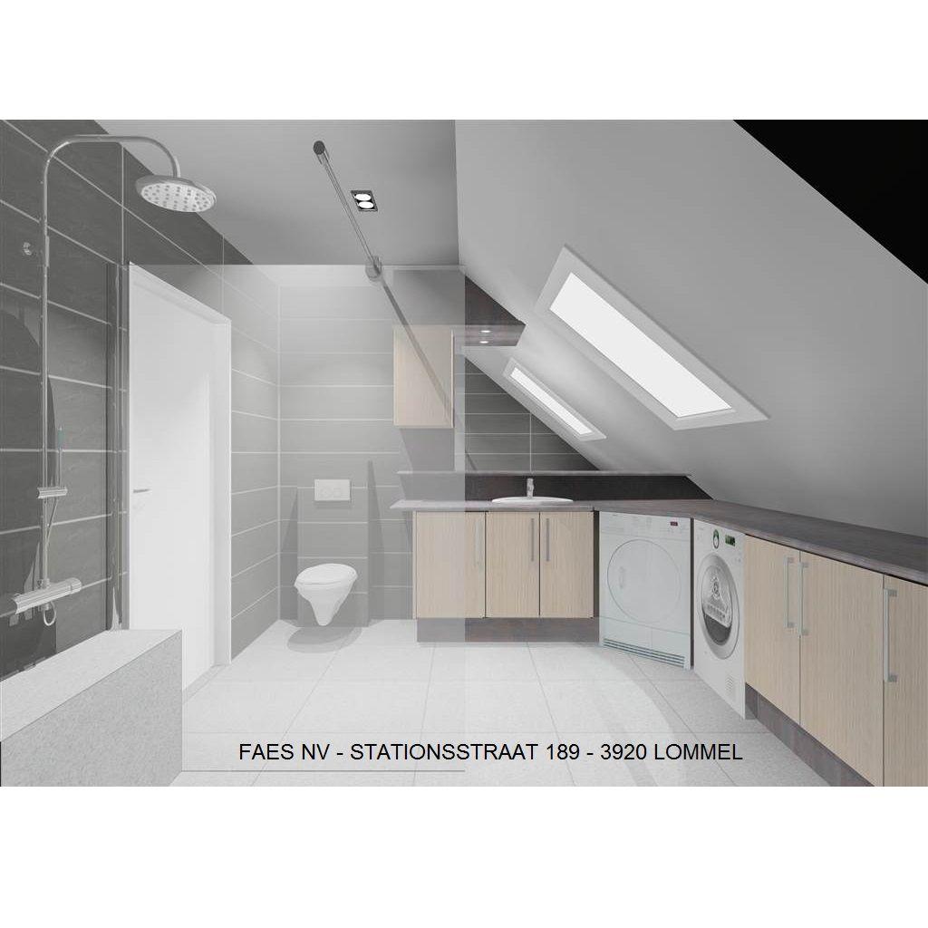 3D Badkamer schuin dak (3), Faes-Lommel - Badkamer | Pinterest ...