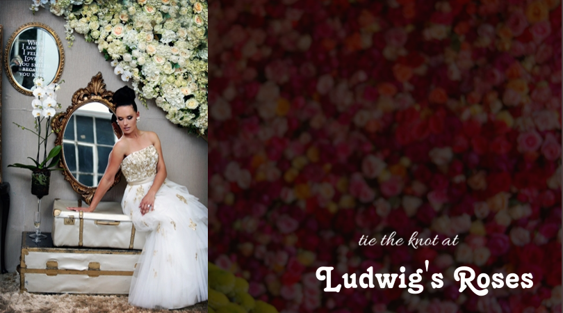 tie the knot  events@ludwigsroses.co.za | 012 544 0144