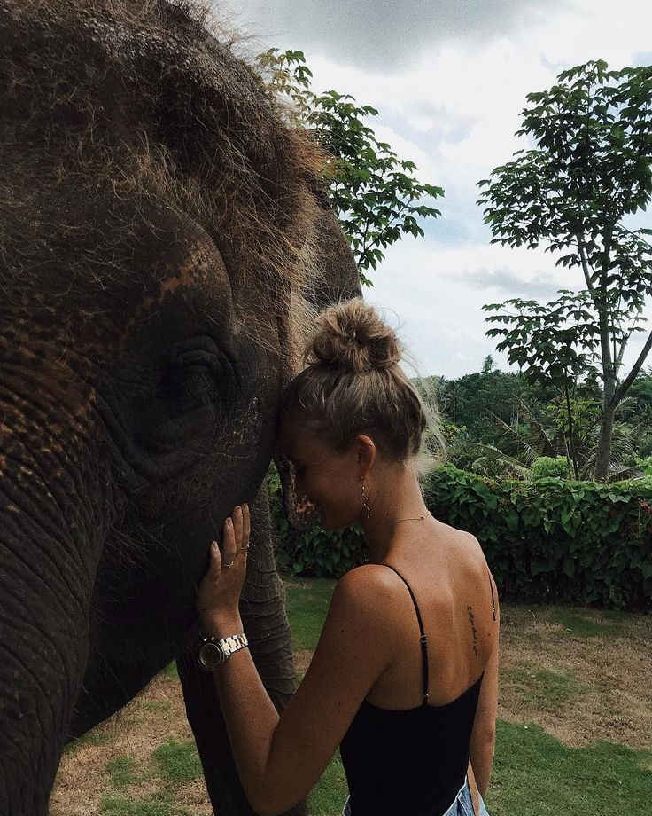 "JOSEFINE H. J on Instagram: ""Hi Everyone, please meet Terry. This beautiful giant was rescued from Sumatra and stole a piece of my heart. The end"""