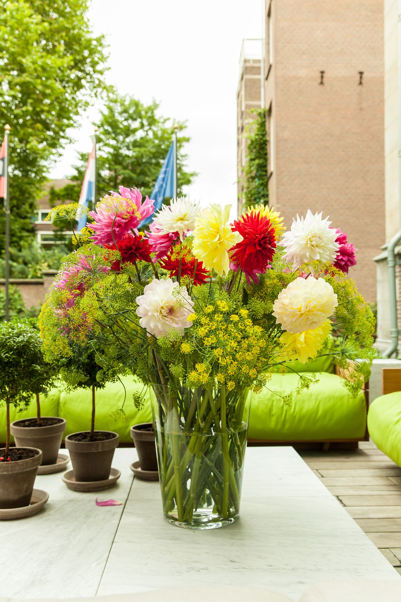 PreDrinks party of the Open Garden Days in Amsterdam