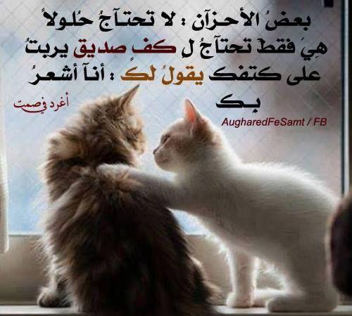الصديق وقت الضيق Pretty Quotes Life Quotes Wisdom Quotes