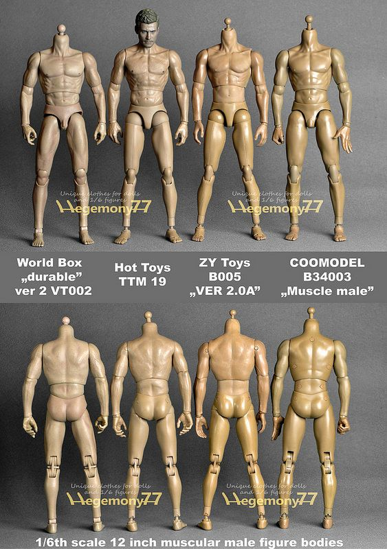 "ZC TOYS 12/"" Muscular 1//6 Scale Man Male No Neck Body F Head Model Figures Dolls"