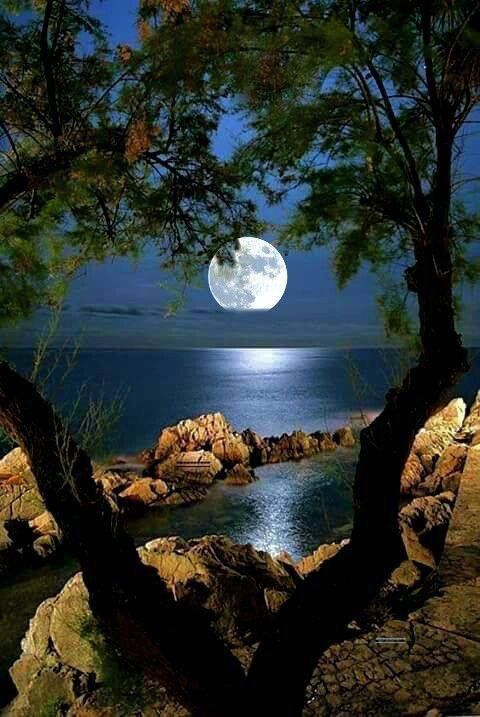 Our Private Swimming Place Beautiful Nature Nature Pictures Beautiful Moon