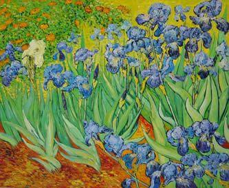 Los Lirios Vincent Van Gogh Pinturas De Van Gogh Cuadros De Van