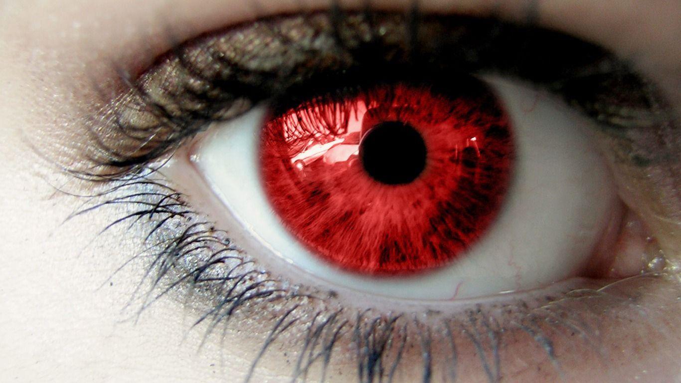 Artistic Eye Wallpaper Eyes Ojos Eyes Eyes Wallpaper Wolf Eyes