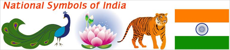 National Symbols Of India India Pinterest India