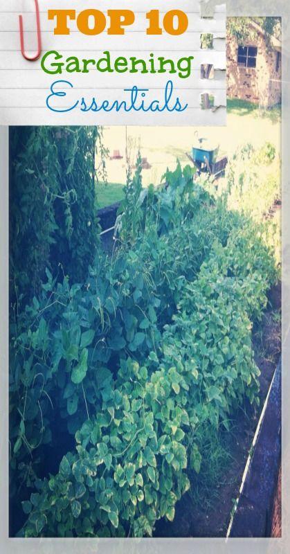 Top 10 Gardening Essentials!  #gardening