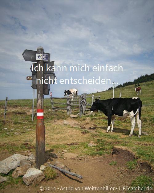 Was soll ich nur machen, wenn ich mich nicht entscheiden kann - http://lifecatcher.de/nicht-entscheiden/
