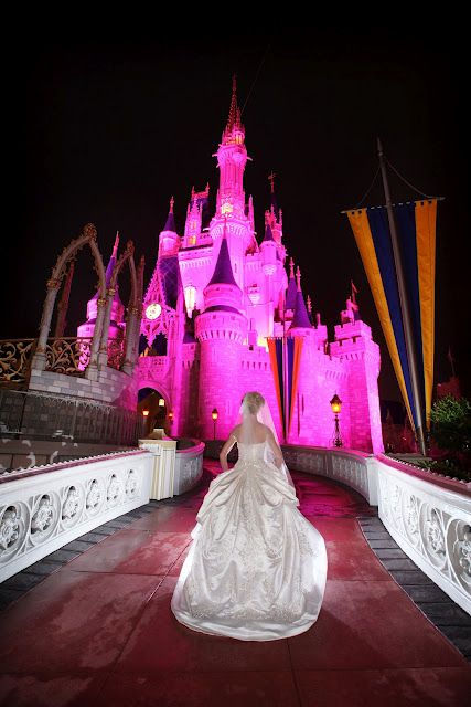 Too Bad Disney Weddings Cost More Than A House
