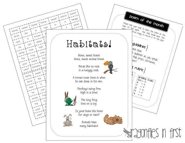 Habitat Freebies | science. | Pinterest | Animal habitats ...