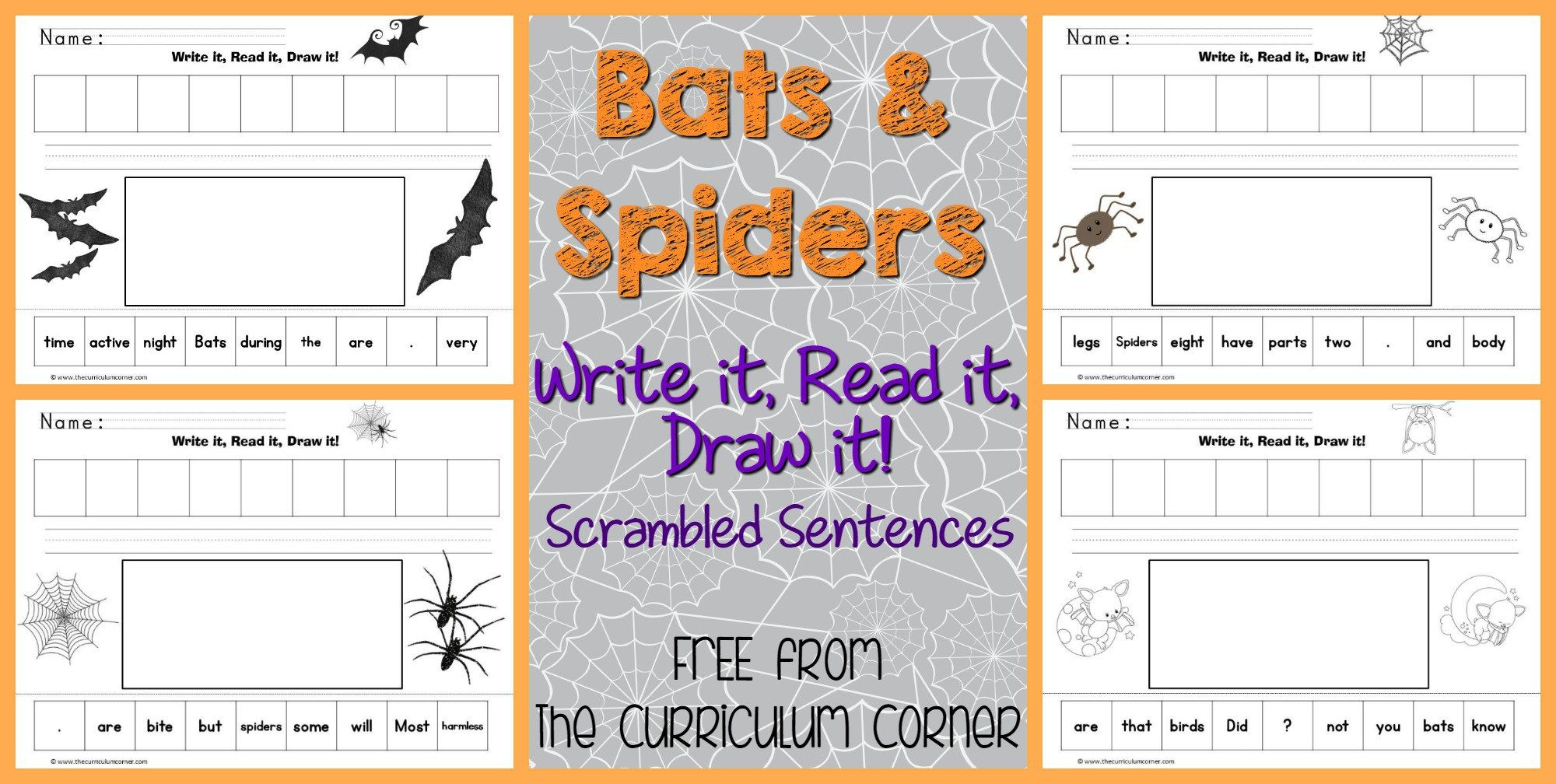 Bats Amp Spiders Read Write Amp Draw It