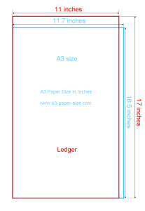 a3 paper size in inches