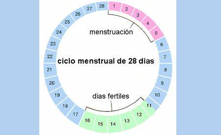 Dias para quedar embarazada