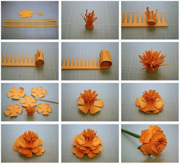 Bits of paper more 3d paper flowers paper craft pinterest 3d bits of paper more 3d paper flowers mightylinksfo