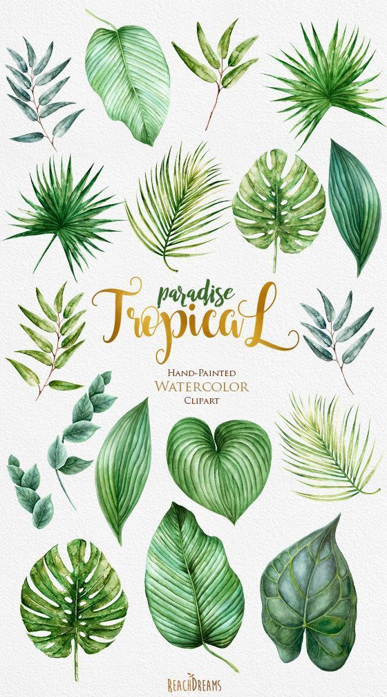 Tropic Clipart, Tropical Watercolor Leaves, Bright Green Foliage, Monstera, Palm tree, Jungle plants, Wedding invitation, bridal shower