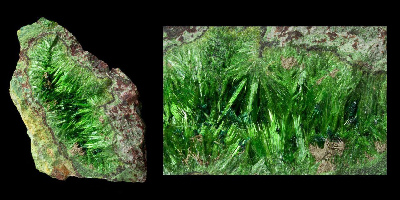 Beautiful Minerals — earthshaped:    cuprosklodowskite    Musonoi Mine,...