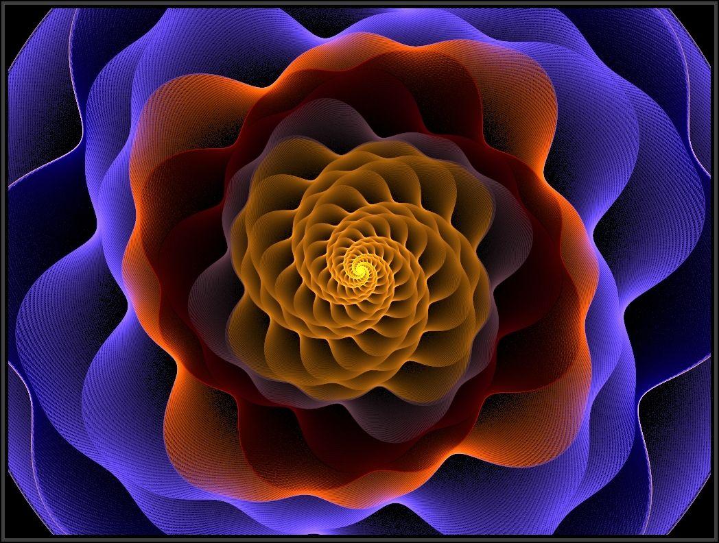 Fibonacci's Rose by *Khan71 Fractal Art   Fibonacci ...