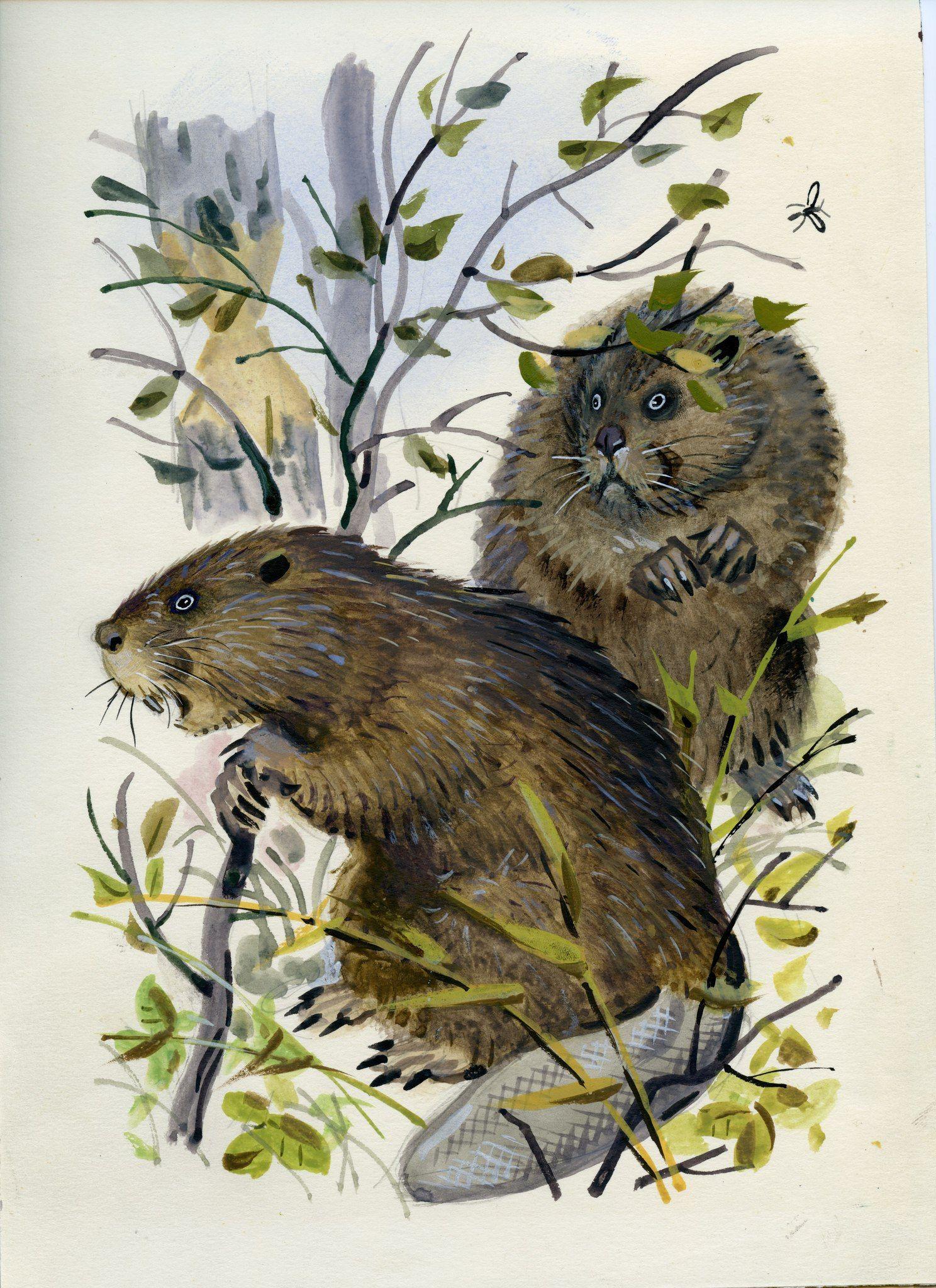 Иллюстрации к листопадничек