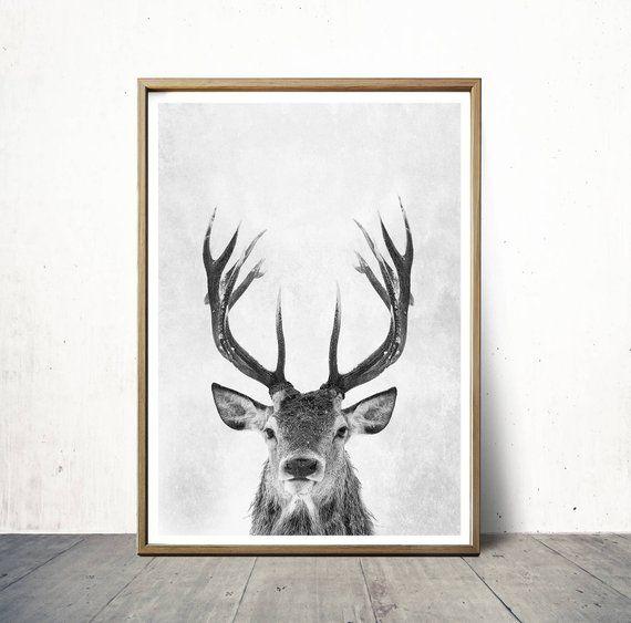 Digital Wall Art Print Deer Print Deer Antlers Stag Print