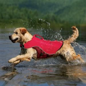I am hoping to teach one of my dogs to surf this summer & I need a life jacket! 2-in-1 Canine Float Coat  Item #00491  Starting at $39.95