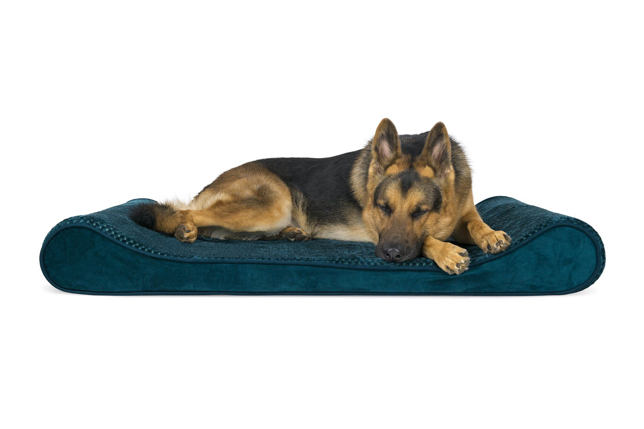 Furhaven Orthopedic Plush And Velvet Luxe Lounger Pet Bed For Dogs And Cats Spruce Blue Jumbo See This Great P Dog Pet Beds Orthopedic Dog Bed Chaise Dog Bed
