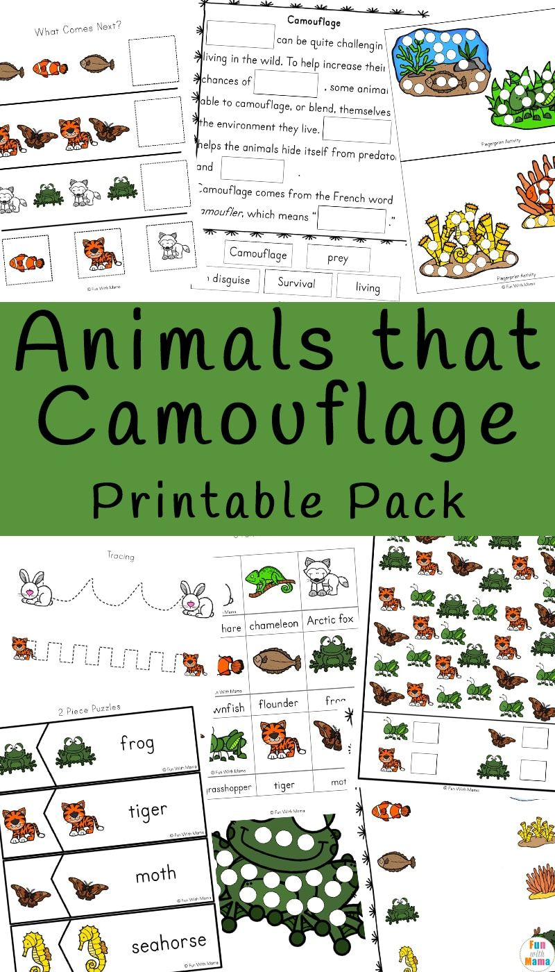 Animals That Camouflage Via Funwithmama Camouflage Activities Fun Lesson Plans Camouflage