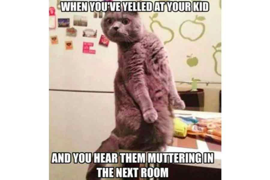 30 Memes Only Moms Will Understand Funny Parenting Memes Animal Memes Funny Pictures