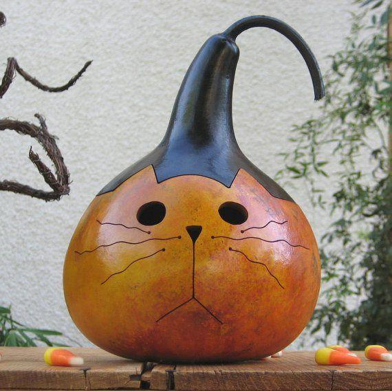 Decorative Gourd Roundup