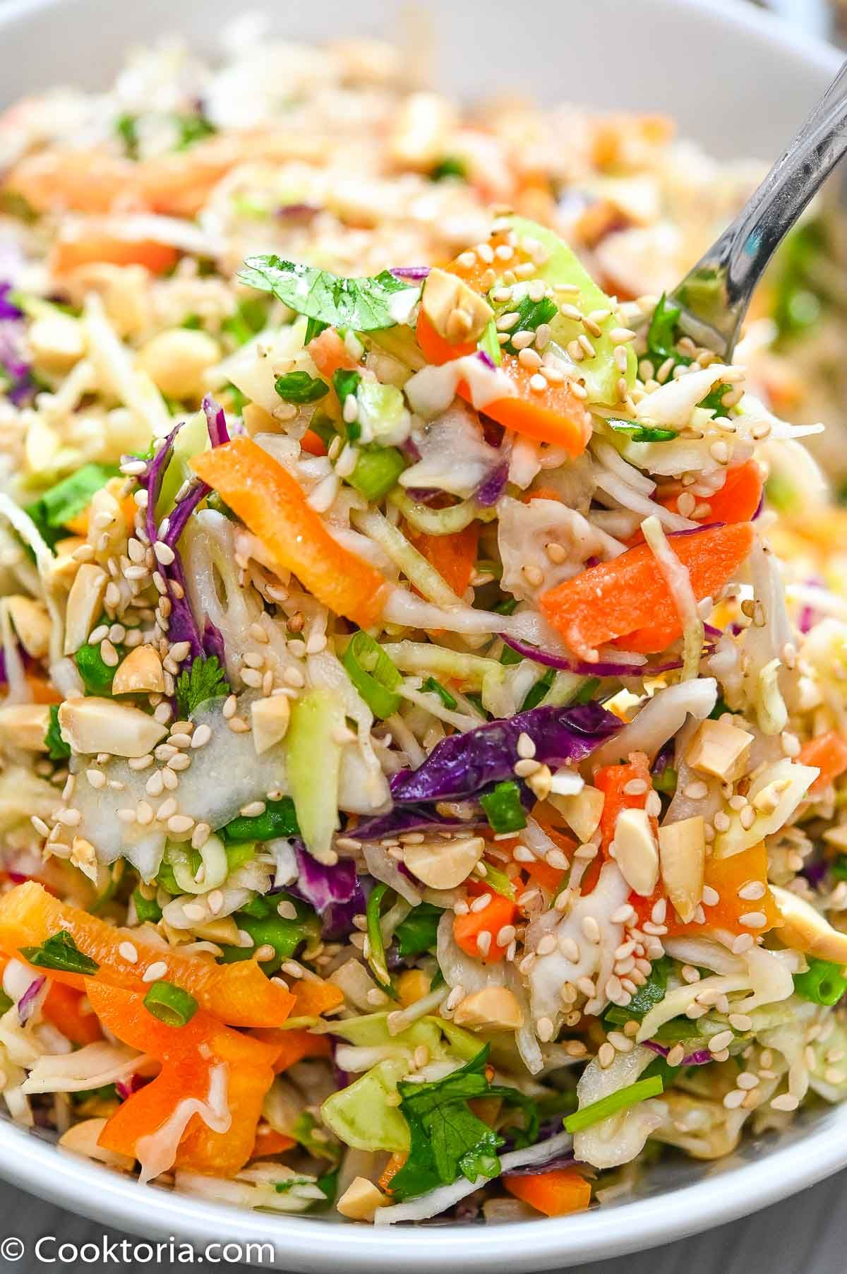 this simple asian slaw is crunchy and tasty made with simple ingredients that pack a lot of flavor this sl in 2020 vegetarian recipes healthy slaw recipes asian slaw pinterest