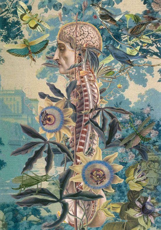 Juan Gatti : Ciencias Naturales