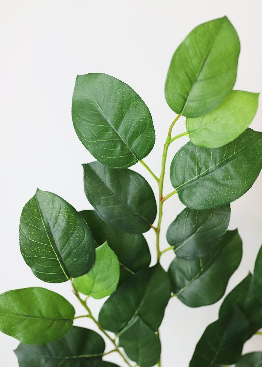 Beautiful artificial lemon leaves branch in green. This lemon leaf plant is a great addition to your centerpieces and flower bouquets to add elegant height and fullness for a natural feel.  Green 25.5