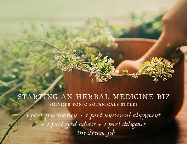 Starting An Herbal Medicine Biz By Ginger Tonic Botanicals
