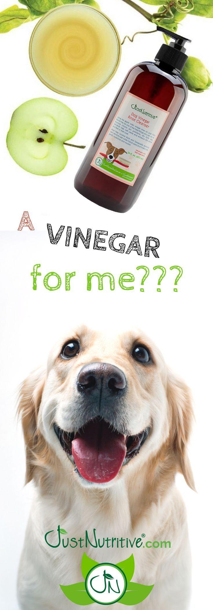 Dog Vinegar Rinse Cleanser 16 oz. Dogs, Dog shampoo, Dog