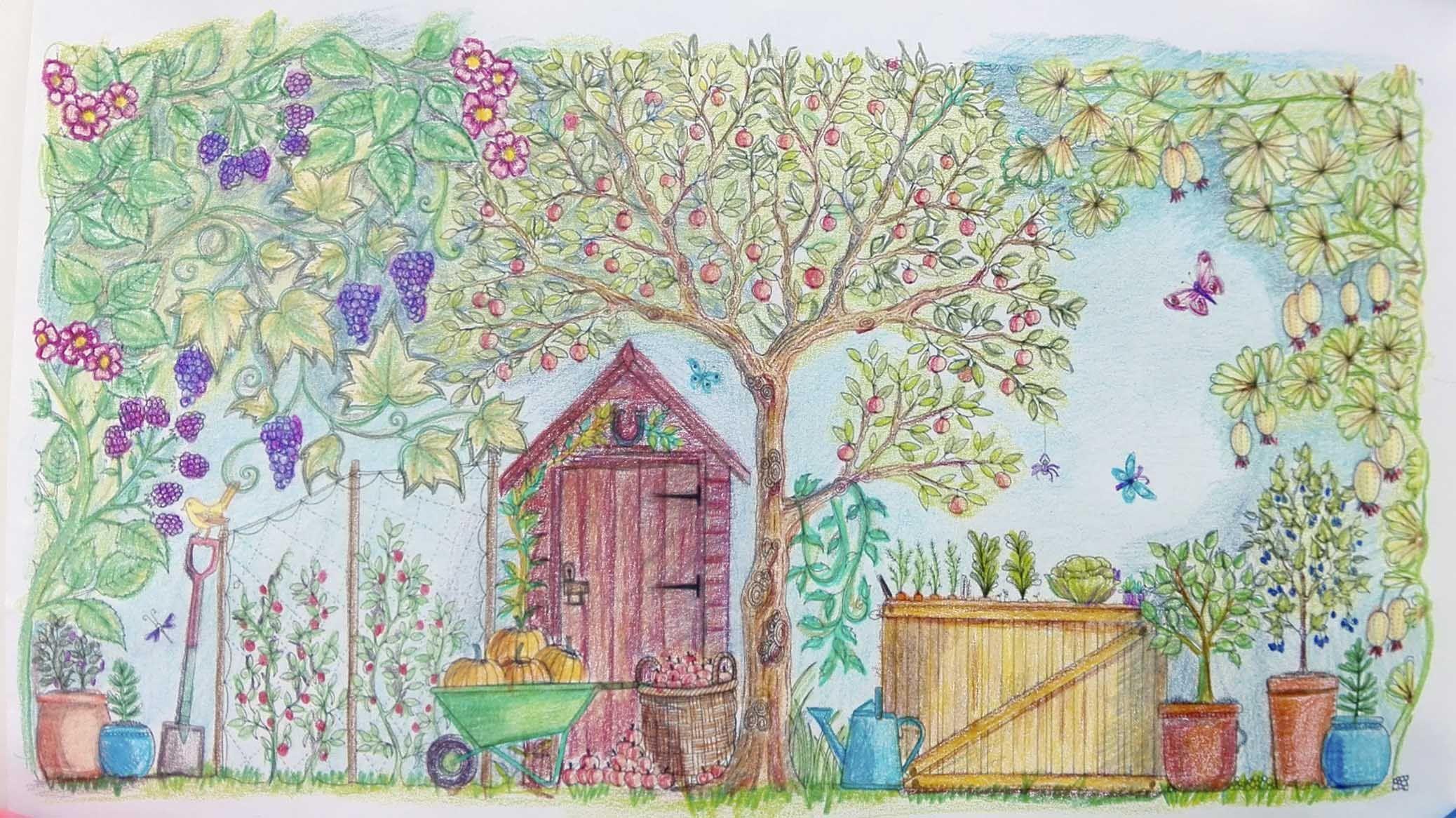 Colorear Jardin Secreto 3 Jpg 2076 1166 Johanna Basford Secret Garden Coloring Books Basford Secret Garden