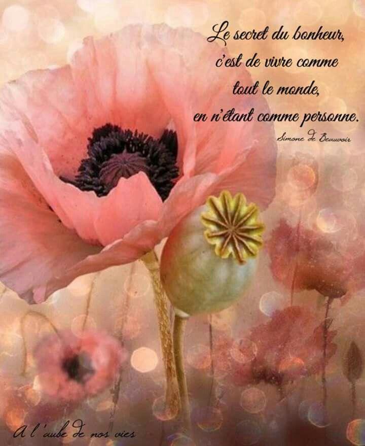 Simone De Beauvoir Page Fb A L Aube De Nos Vies Peinture Fleurs Aquarelle Fleurs Art Floral
