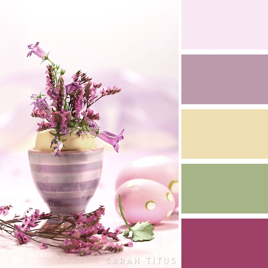 25 Spring Color Palettes | Spring color palette, Spring colors and ...