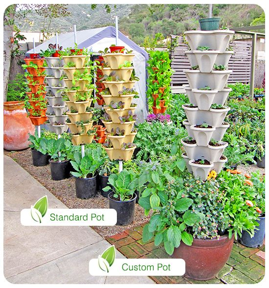 Vertical garden systems gardening pinterest vertical for Vertical garden wall systems